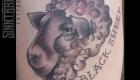 Marc Guthe Black & Grey Tattoo schwarzes Schaaf sheep
